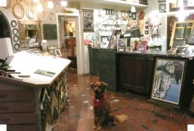 Entrance shot with our shop dog, Douglas MacArthur.