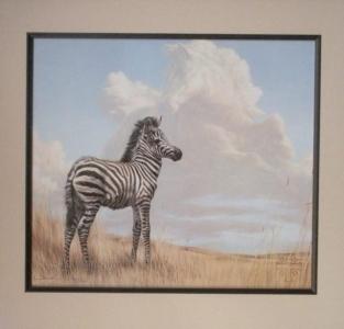 Half Zebra and half Horse Print